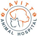 Lavitt Animal Hospital - Morton Grove Veterinarian